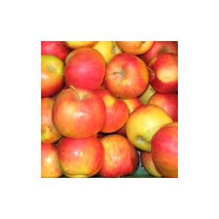 Apfel Cripps Pink(Ersatz für Elstar)