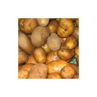 Kartoffeln vorw. festk.