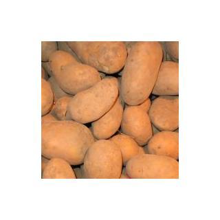 Kartoffeln vfk 3 kg