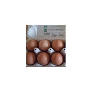 Eier (6 St.)