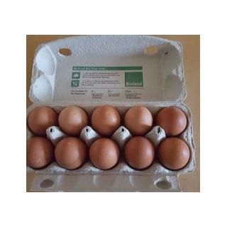 Eier (10 St.)