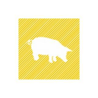 Schweinekotelett 2 Stk ca.400g