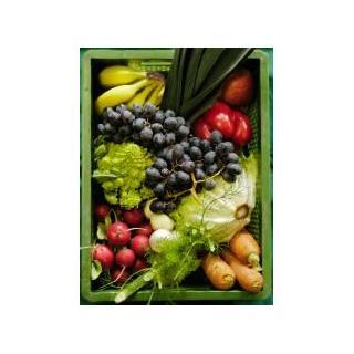 Kleinkind Obst&Gemüse