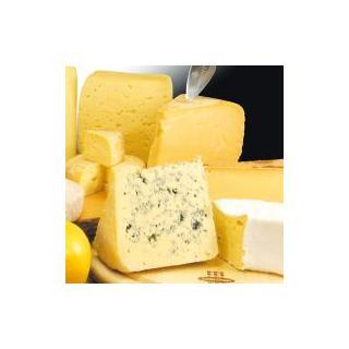 Käse Monatsaktion